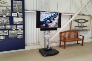 Plasma screen on a stand with audio